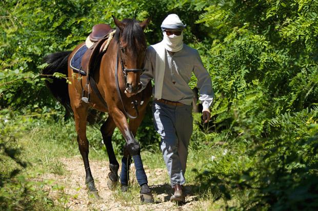 camo-2010-spring-summer-horses-1