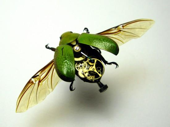 GreenRutelidae