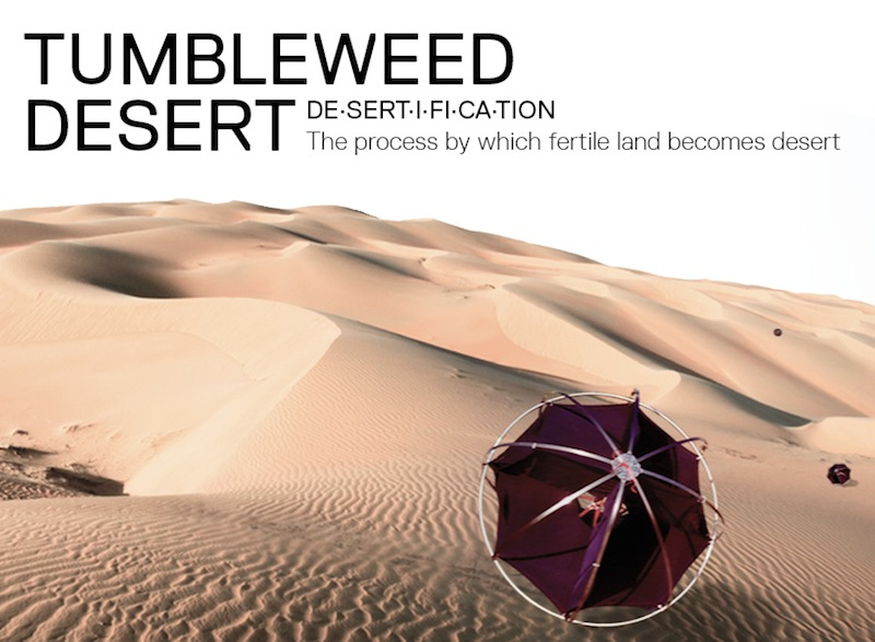 Tumbleweed-Desert-Shlomi-Mir