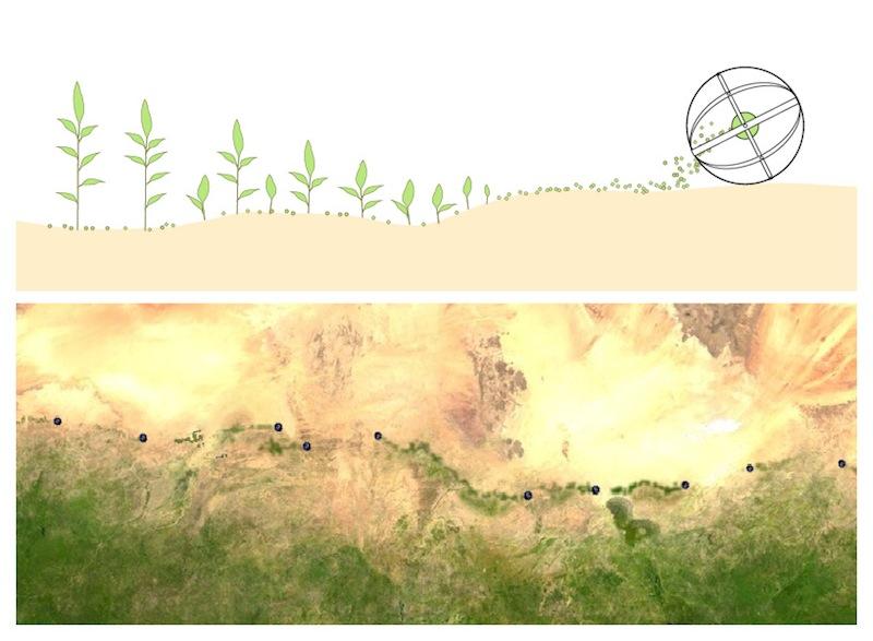Tumbleweed-Desert-Shlomi-Mir3
