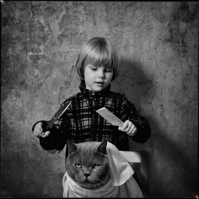 polkadot_cat_child4-640x640