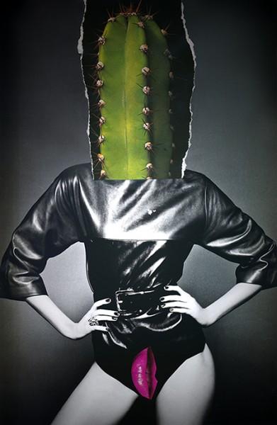 Hollyannebuck.com_orgasm_addict_bg