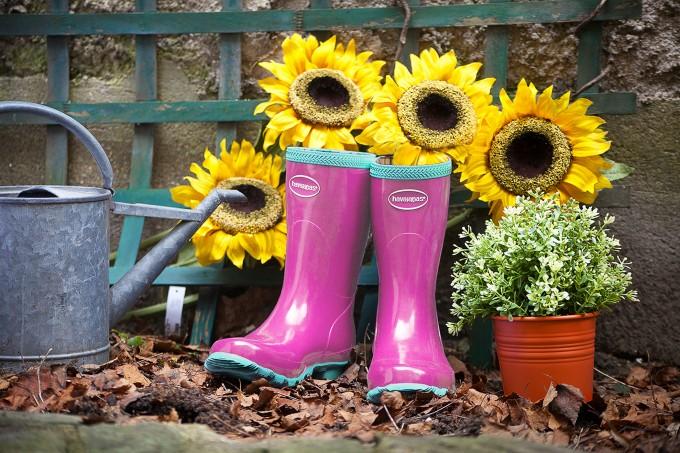 Gardening1tournesols